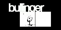 Bullinger-Logo Kopie